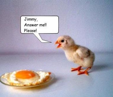 Funny Pictures: Cooked egg