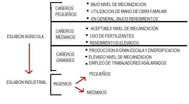 Circuito Productivo De La Caña De Azucar : Produccion azucarera del noa circuito productivo de la