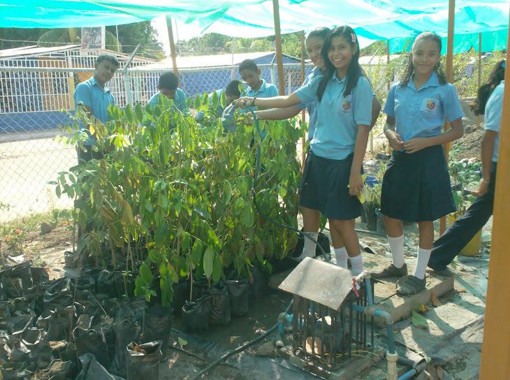 Los estudiantes de 2º C trabajando en el vivero