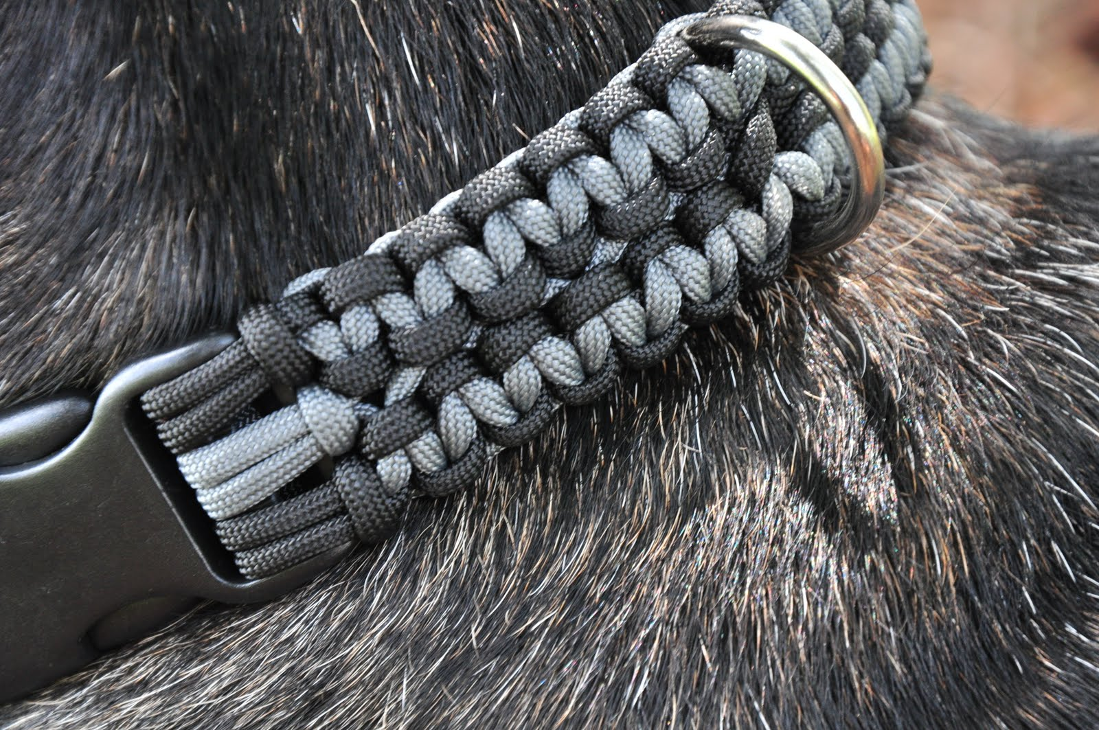 Paracord designs 550 paracord dog leash and collars in for Paracord leash instructions