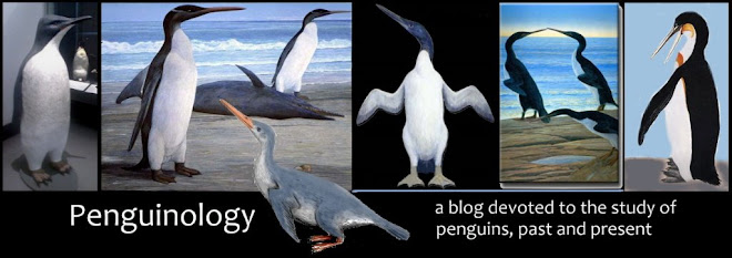 Penguinology