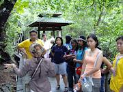 Langkawi Mangroove Safari Package