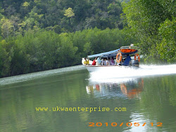 BOAT FOR MANGROVE SAFARI
