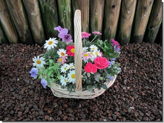 Plantas y flores Centros para decorar