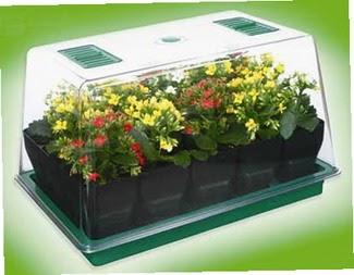 Fuentes jardin propagadores de plantas dise o y for Paginas de decoracion de interiores gratis