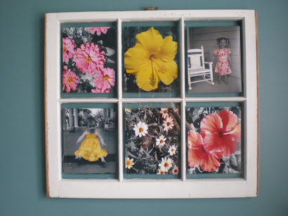 Window Pictures