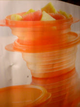 Gorgeous Orange Tupperware