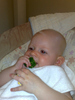 Baby eating solid broccoli