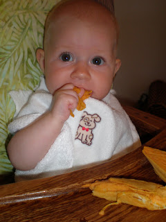Baby eating sweet potato