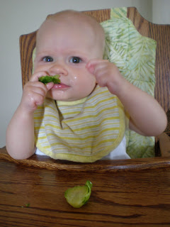 baby eating brussels sprout