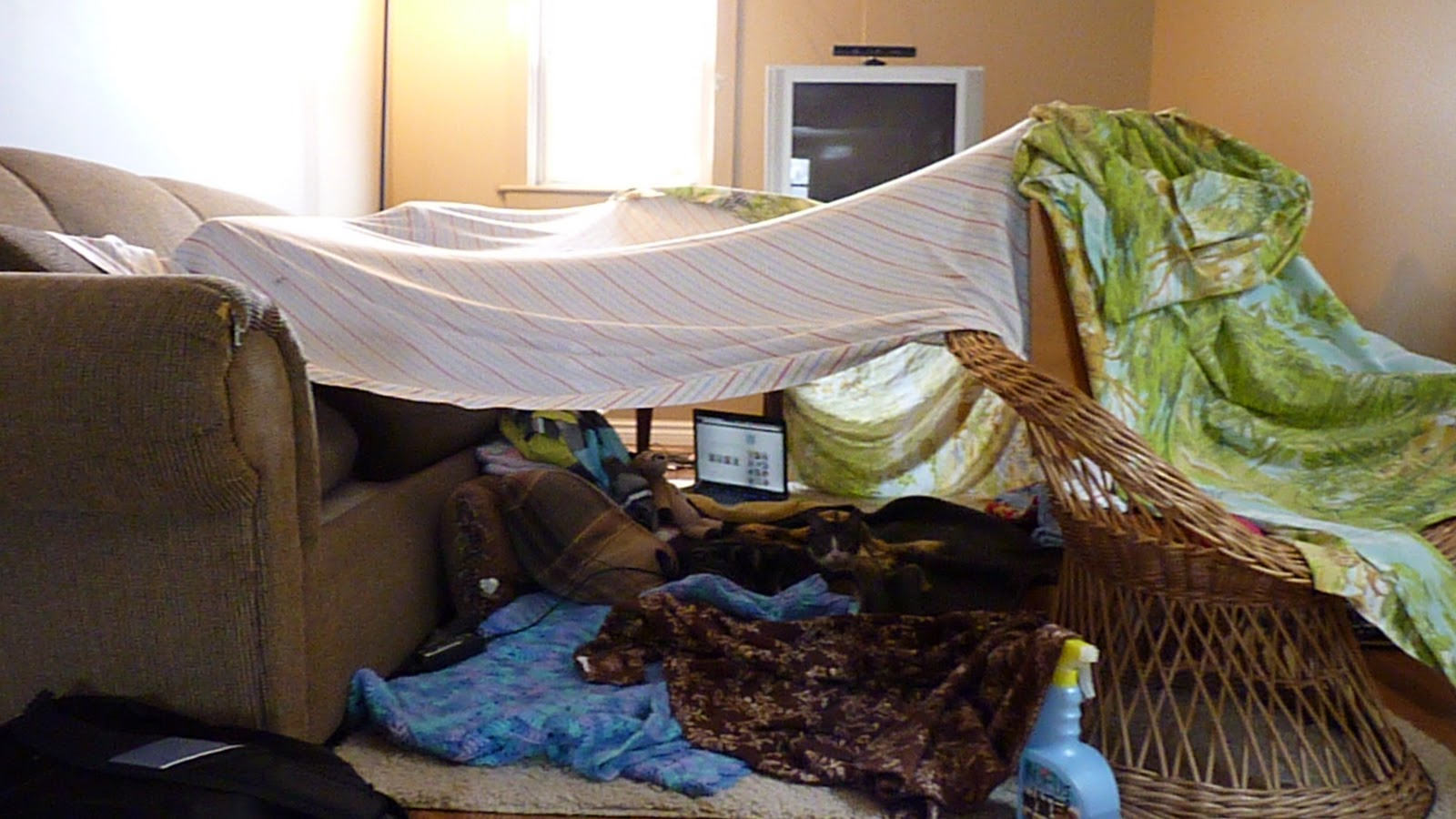 Building forts homes tents whatever they are called in your area is something that I did when I was a kid my children did when they were kids and my ... & annies home: Construct a Blanket Fort