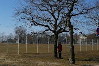 Tähtis puu :)