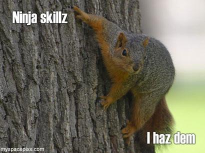 http://1.bp.blogspot.com/_Dq8XOXg9RSQ/SwT9eohYVbI/AAAAAAAAAUU/oZ5T3KBrg2Q/s1600/ninja-skillz.jpg