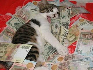 gato con biletes