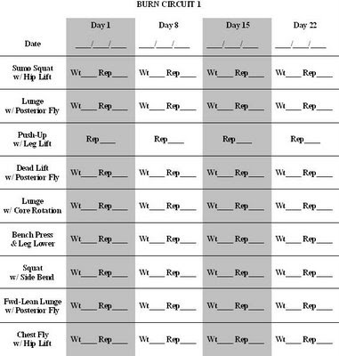 weider 8530 exercise chart pdf