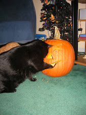 Arthur helping with carving the pumpkin