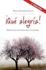 ¡Qué alegría!  Historia de una conversión en Lourdes