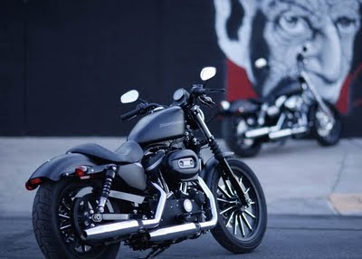harley davidson 883 iron