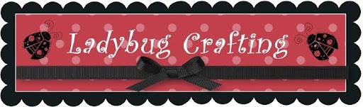 Ladybug Crafting