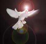 Lễ Chúa Thánh Thần Hiện Xuống
