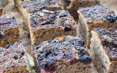 bluebird bread squares