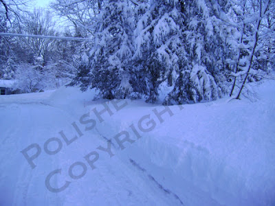 Picture of snow plowed drive