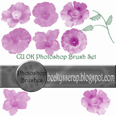 Photoshop Flower Brushes By: Becky's Scraps Bkhpoppybrushpreview