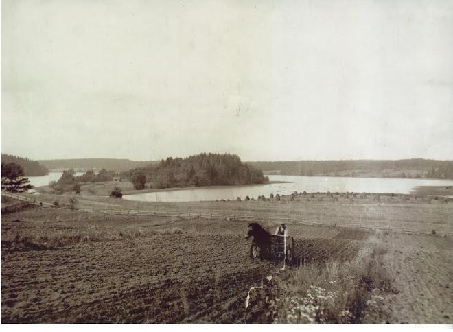 Kotojärvi