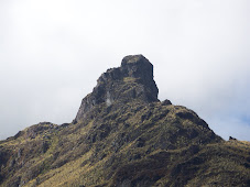 """""""La Piedra Que Crece"""""""