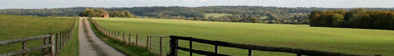 Subvenciones Agricultura, Ayudas del Campo