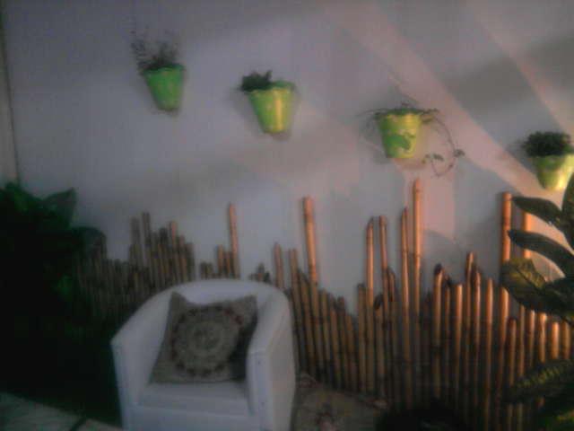 Carla Camilo Como fazer um belo jardim gastando pouco!