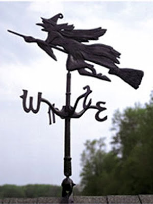 My new weathervane as shown on the For The Birds Nature Shop website