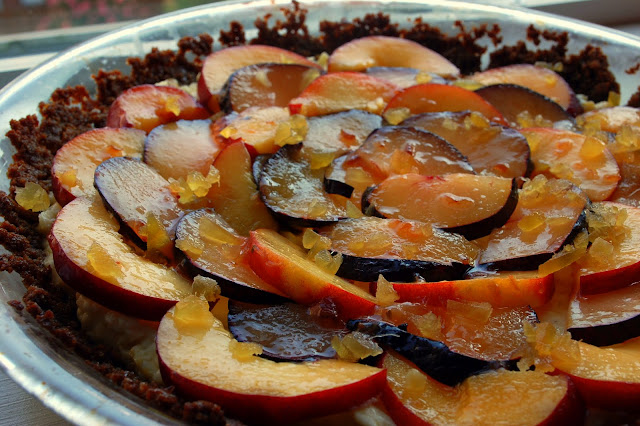The Skillet Takes: Nectarine, Plum, and Mascarpone Ginger Tart