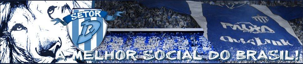 Setor D - A melhor Social do Brasil