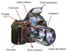 Components bàsics a una càmera SLRD