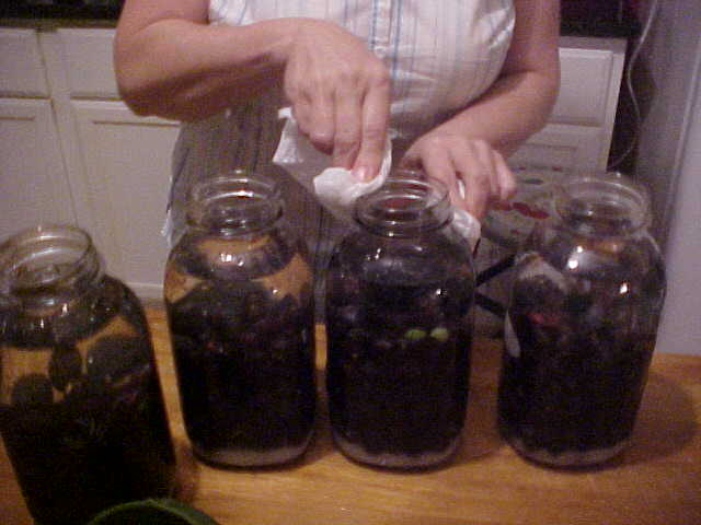 how to make homemade wine from grape juice
