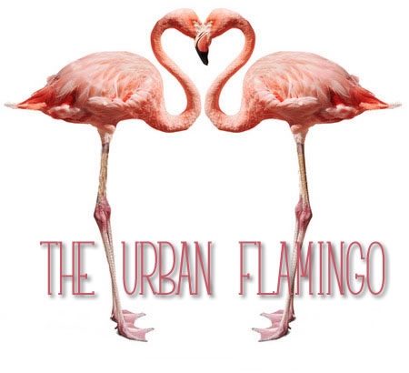 TheUrbanFlamingo
