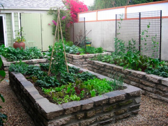 A Vegetable Garden Designed By