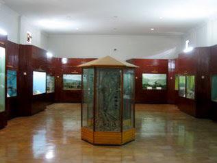 Bagian Dalam Museum Zeologi