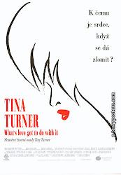 Baixar Filme Tina – A Verdadeira Historia de Tina Tuner (+ Legenda)