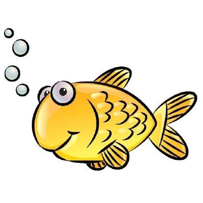 imagenes de animales peces - Fotos: Ojazos animales Ojo de pez 347 Muy Interesante