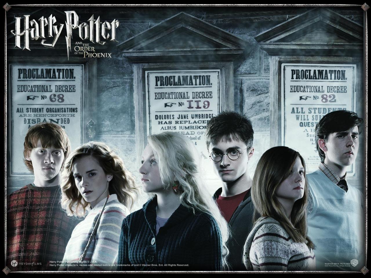 Wonderful Wallpaper Harry Potter Christmas - Harry-Potter-the-Order-Phoenix-wallpaper  Image_503235.jpg