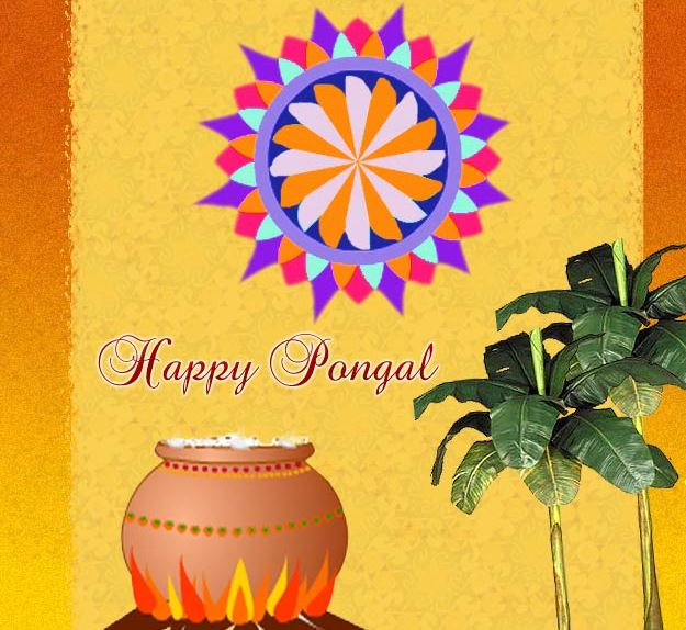 Wallpapers Of Pongal Festival. hd pongal festivals wallpapers
