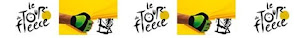 Le Tour de Fleece Ravelry