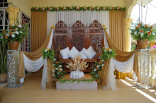 my pelamin (memory refreshment)