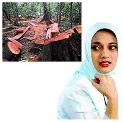 Kontemplasi Pemberantasan Illegal Logging, Marissa Haque