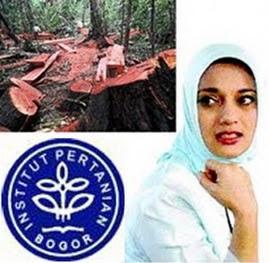 Disertasi Marissa Haque di IPB tentang Pemberantasan Illegal Loging di Riau