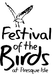 2nd Annual Festival of the Birds at Presque Isle