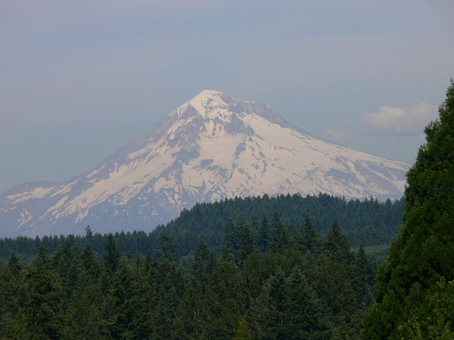 Mt. Hood from the Gorge