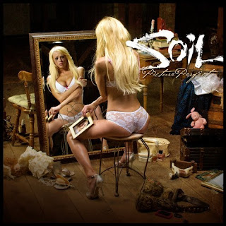 http://1.bp.blogspot.com/_ECc810r4xdQ/St2uDlZ7crI/AAAAAAAACF8/MT7lyKTNdvU/s320/Soil+%E2%80%93+Picture+Perfect+(2009).jpg